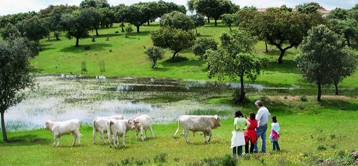 Hiszpania stawia na ekoturystykę